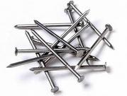 Galvanized Common Nails